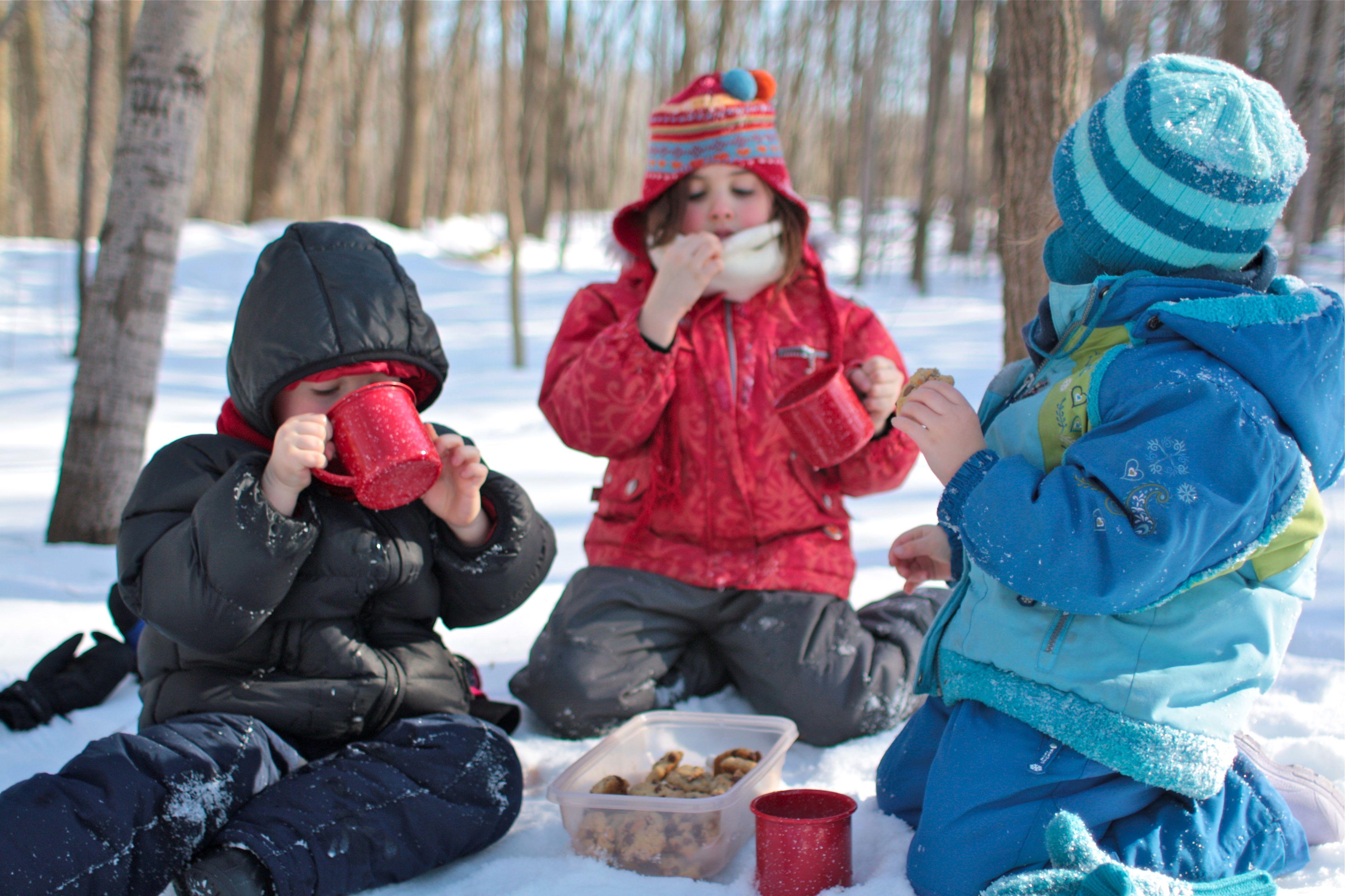 Winter picnik
