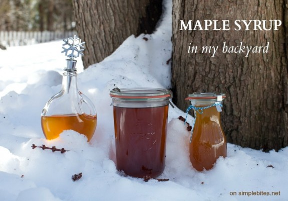 making maple syrup at home on simplebites.net