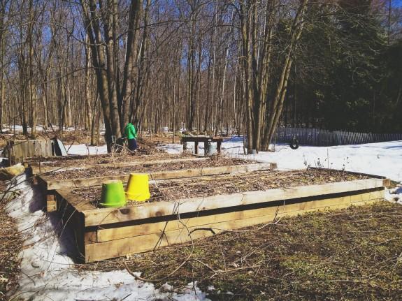 raised garden beds in spring