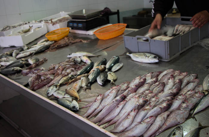 counter of fishmonger at market