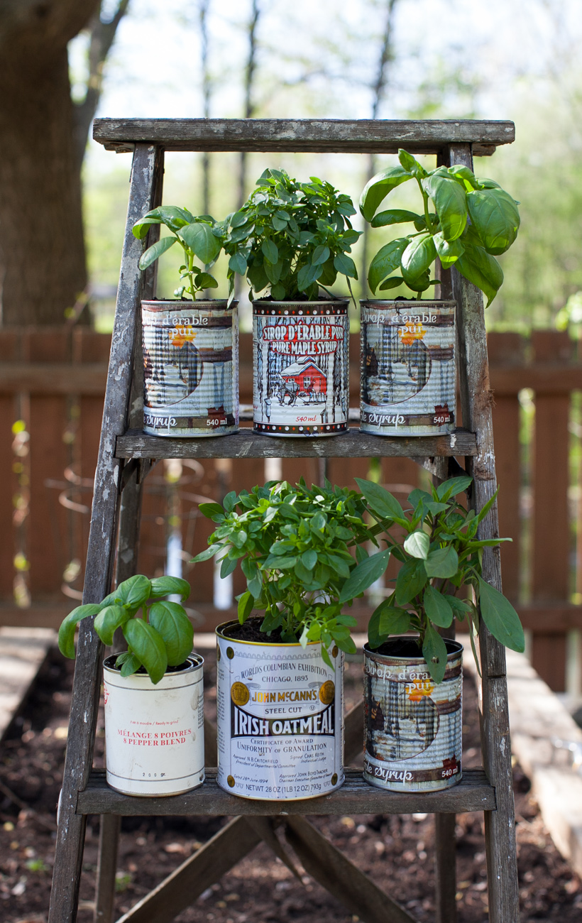 Recycled Herb Planters And An Upcycled Wooden Ladder Garden Display