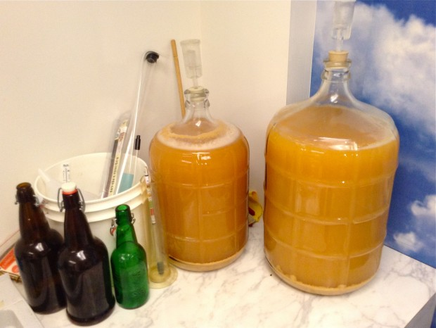 fermenting apple cider