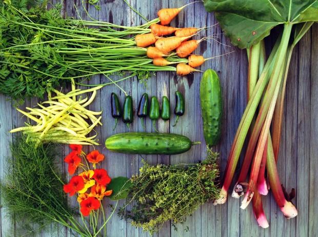 Fresh garden produce
