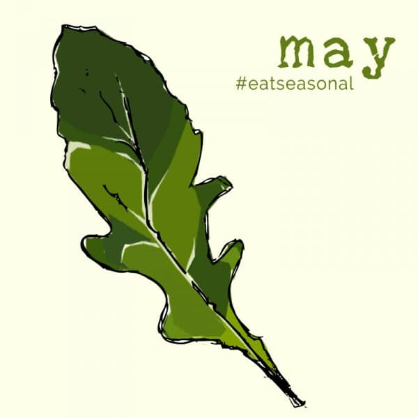 May eat seasonal illustration