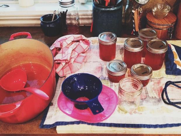 making rhubarb jelly.