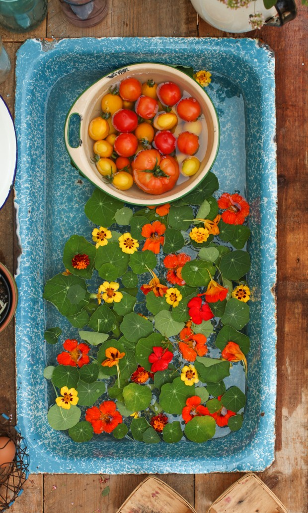 Tomato Nasturtium Salad with Dates and Pistachios | Simple Bites #recipe #salad #vegetarian #vegan