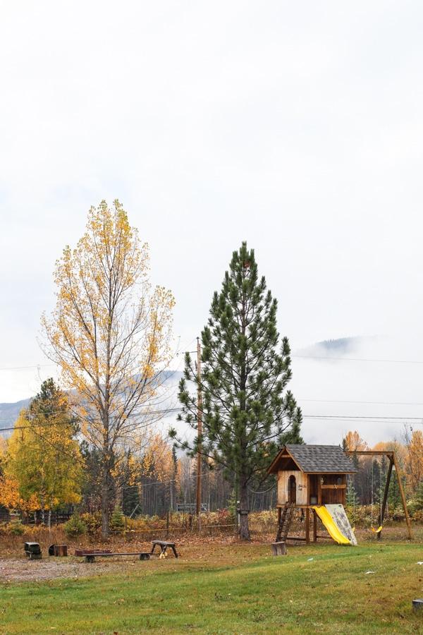 A British Columbia urban homestead | Simple Bites