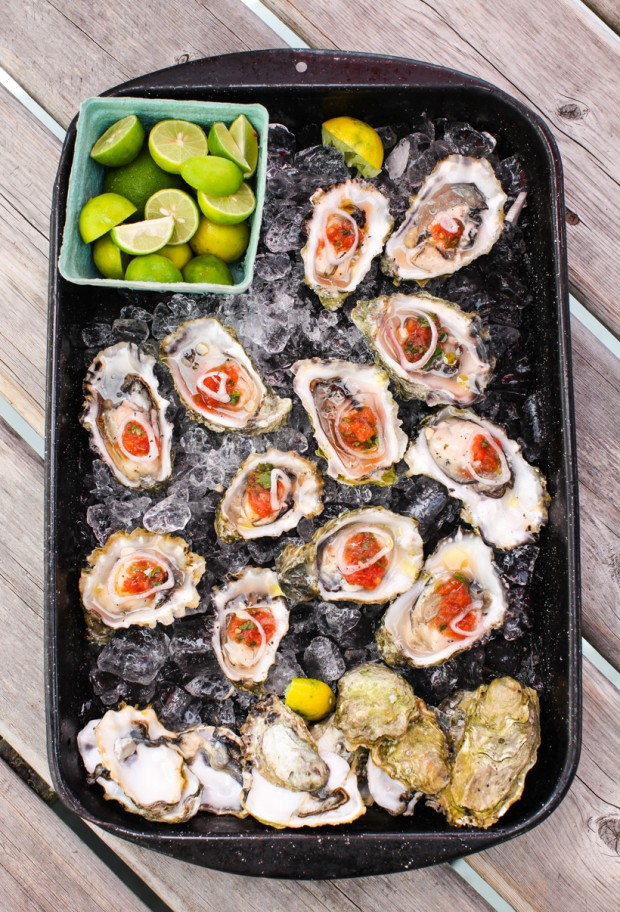 Fresh oysters on the half shell || Simple Bites