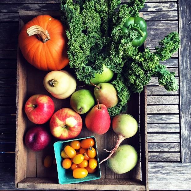 November produce box