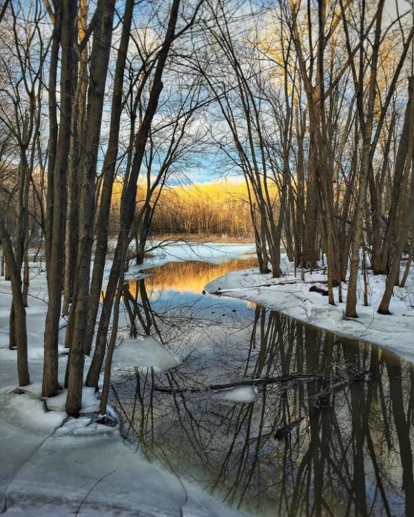 Quebec pond