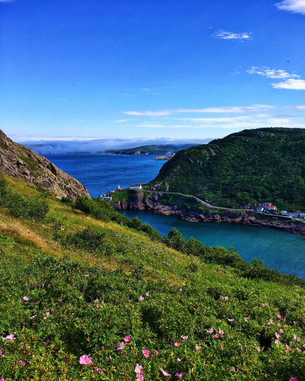 Signal Hill || Family travel in Newfoundland, Canada | Simple Bites