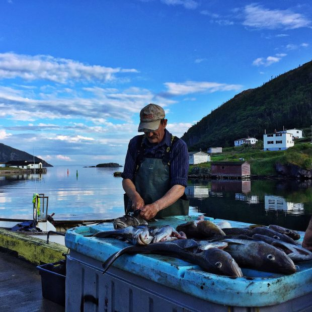 Fisherman | Family travel in Newfoundland, Canada | Simple Bites