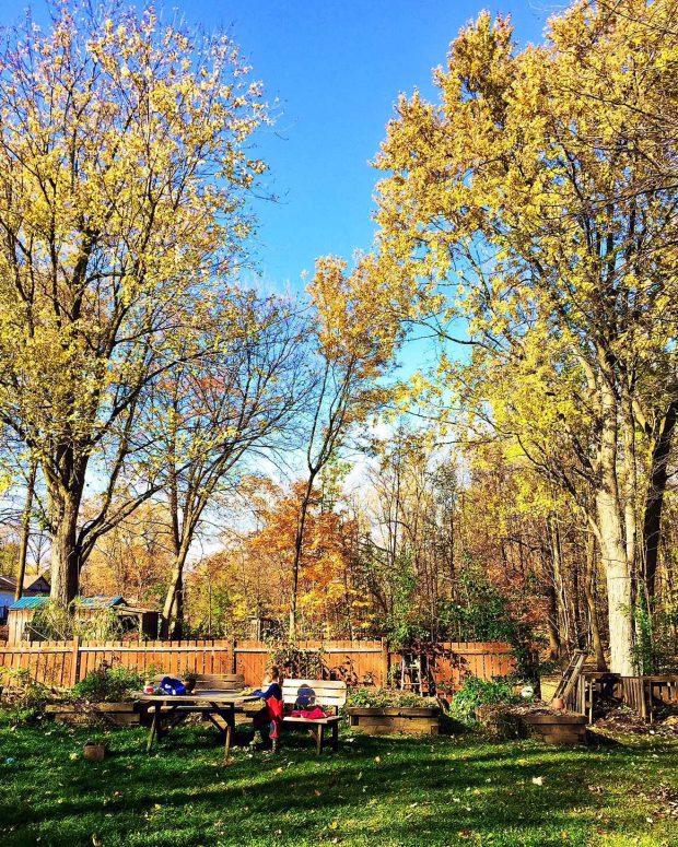 Bourque homestead in fall