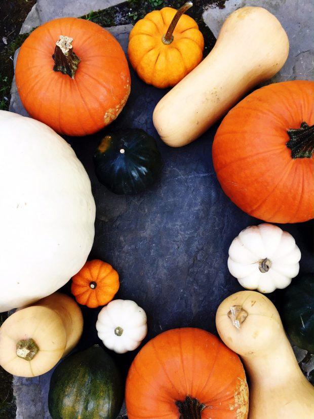 assorted-pumpkins
